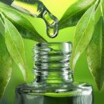 Primo Plant Remedies - Pure CBD Oil Drops